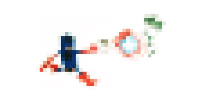 RW_pixels.jpg